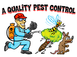 quality pest control brisbane